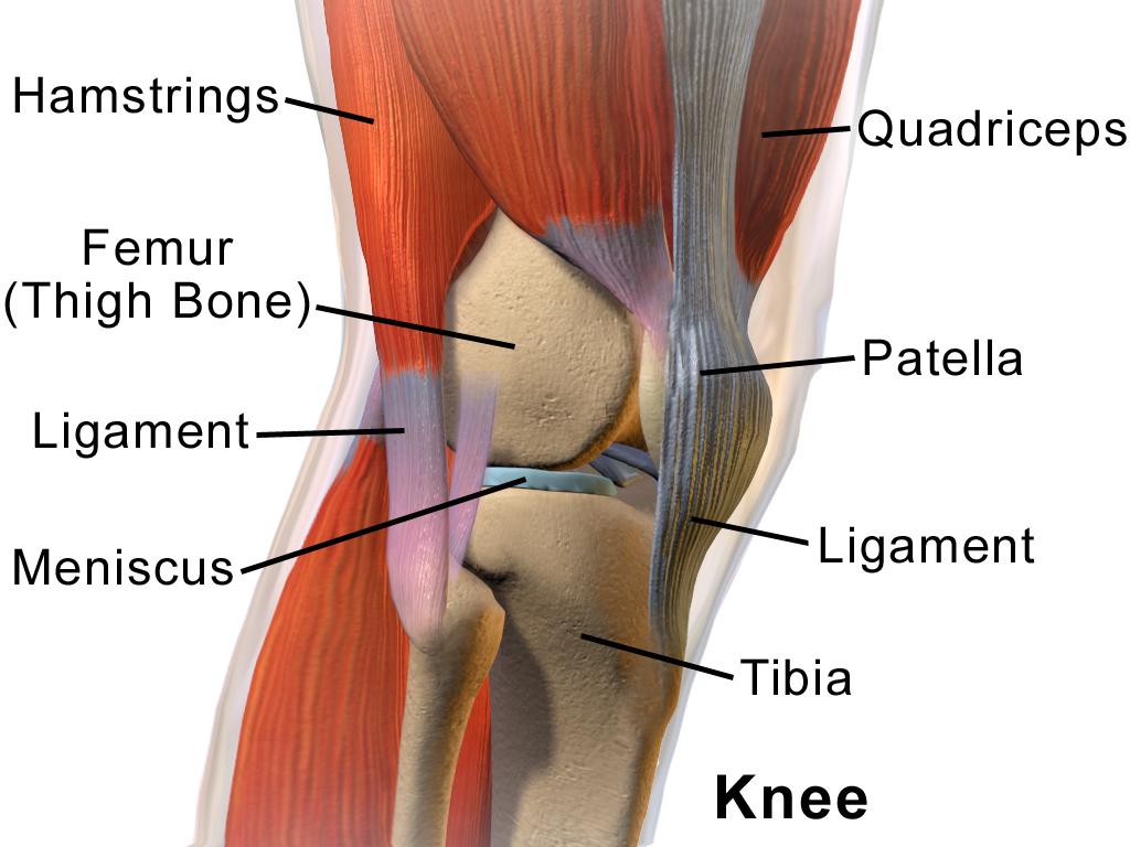 Patella tendonitis – Let's fix it!