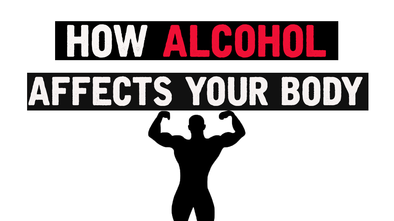 How Alcohol Affects Your Body – Fitness